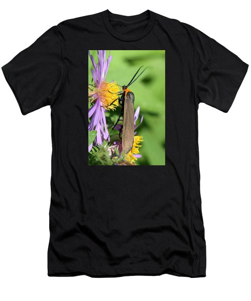 Yellow-collared Scape Moth Men's T-Shirt (Athletic Fit)