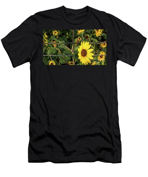 Yellow Flower Escaping From A Barb Wire Fence Men's T-Shirt (Athletic Fit)