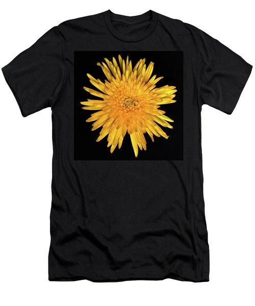Yellow Flower Macro Men's T-Shirt (Athletic Fit)