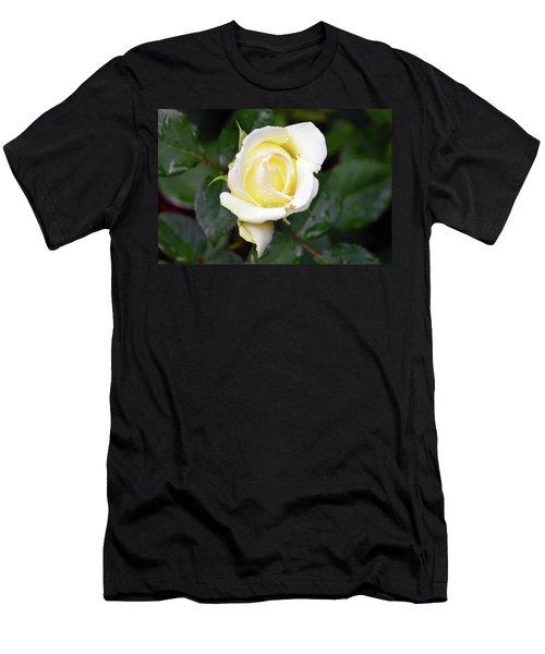 Yellow Rose 1 Men's T-Shirt (Athletic Fit)