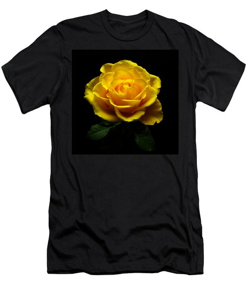 Yellow Rose 4 Men's T-Shirt (Athletic Fit)