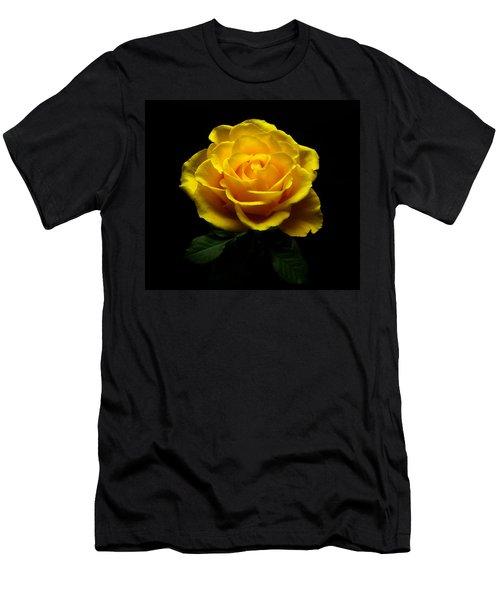 Yellow Rose 4 Men's T-Shirt (Athletic Fit)