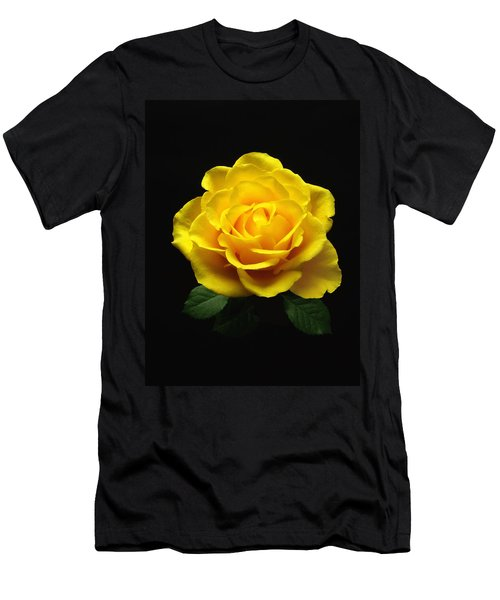 Yellow Rose 6 Men's T-Shirt (Athletic Fit)