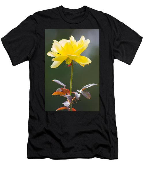 Men's T-Shirt (Athletic Fit) featuring the photograph Yellow Rose by Willard Killough III