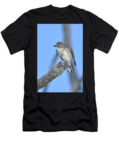 Yellow-rumped Warbler Itch Men's T-Shirt (Athletic Fit)