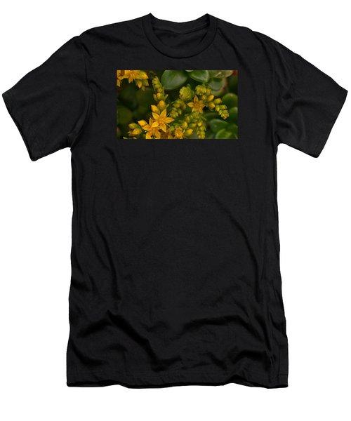 Yellow Sedum Men's T-Shirt (Athletic Fit)