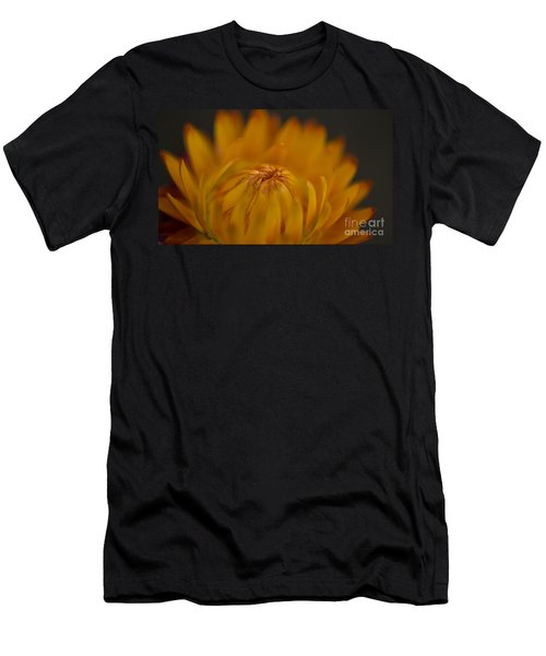 Yellow Strawflower Blossom Close-up Men's T-Shirt (Athletic Fit)