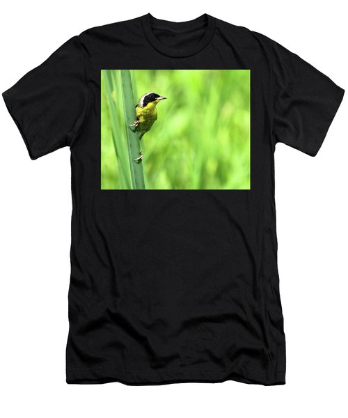 Yellow Throat Men's T-Shirt (Athletic Fit)