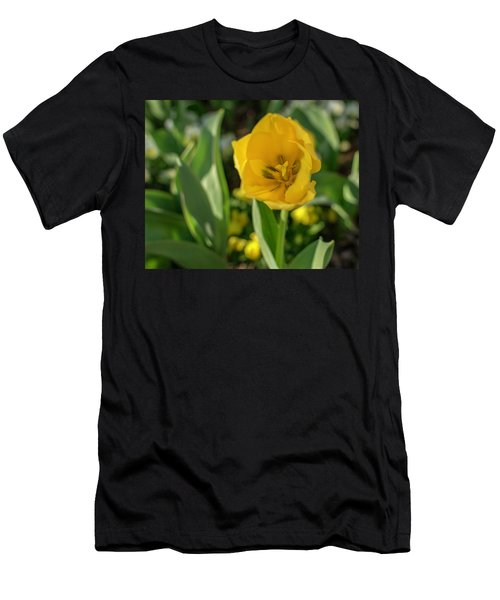 Yellow Tulip Men's T-Shirt (Athletic Fit)