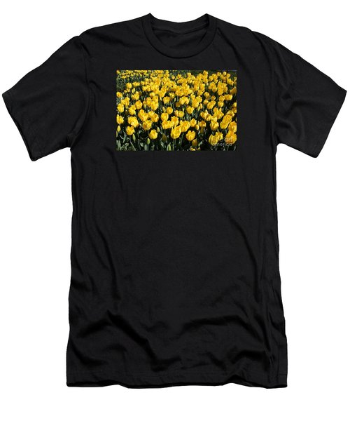 Yellow Tulips Men's T-Shirt (Slim Fit) by Bev Conover