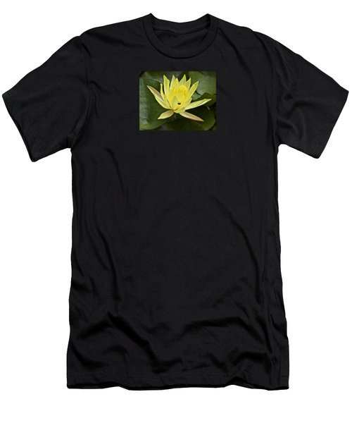 Yellow Waterlily With A Visiting Insect Men's T-Shirt (Athletic Fit)