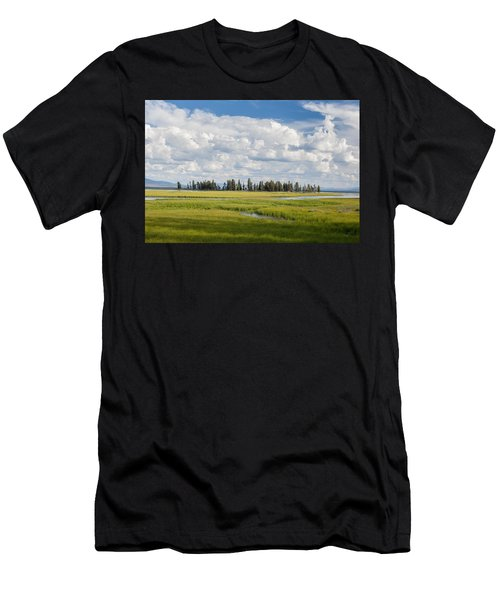 Yellowstone Meadow Men's T-Shirt (Athletic Fit)