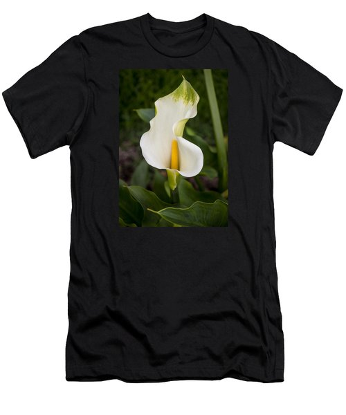 Young Calla Lily Men's T-Shirt (Athletic Fit)