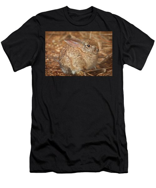 Young Cottontail In The Morning Men's T-Shirt (Athletic Fit)