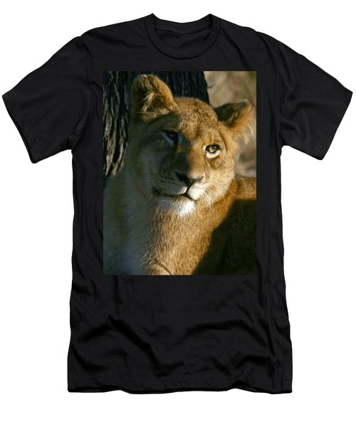 Young Lion Men's T-Shirt (Athletic Fit)