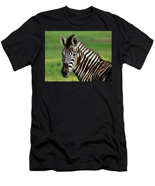Zebra Close Up Men's T-Shirt (Athletic Fit)