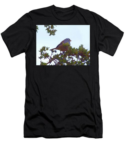 White Crowned Sparrow In Cedar Men's T-Shirt (Athletic Fit)