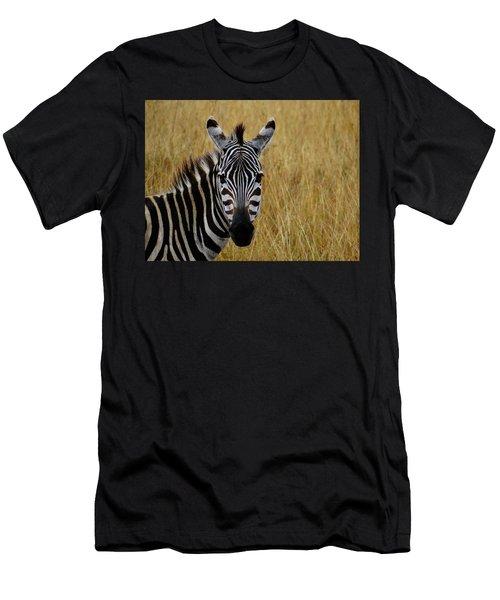 Zebra Half Shot Face On Men's T-Shirt (Athletic Fit)