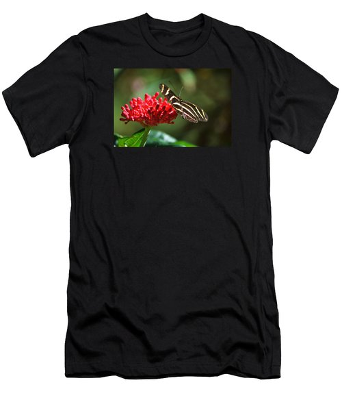 Zebra Heliconia Butterfly Men's T-Shirt (Athletic Fit)