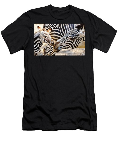 Zebra Mother And Calf Men's T-Shirt (Athletic Fit)
