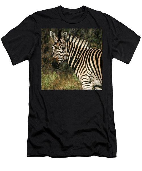 Zebra Watching Sq Men's T-Shirt (Athletic Fit)