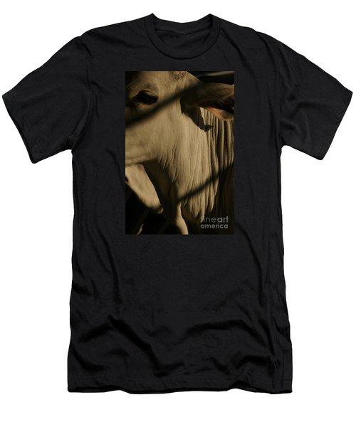 Zebu Men's T-Shirt (Athletic Fit)