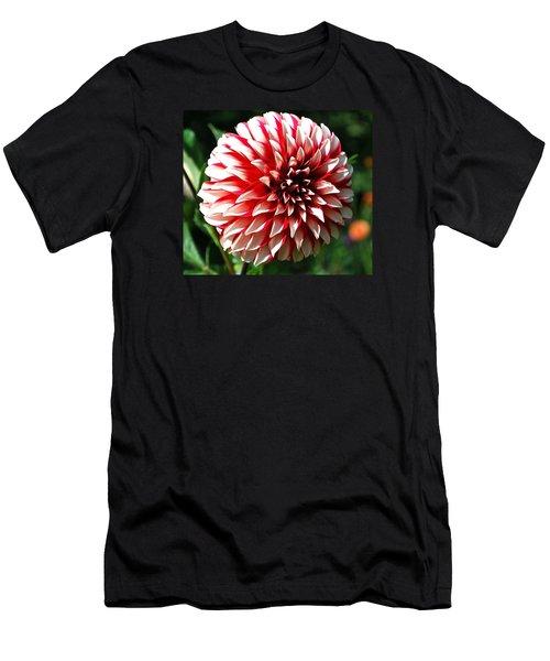 Zesty Dahlia Men's T-Shirt (Athletic Fit)