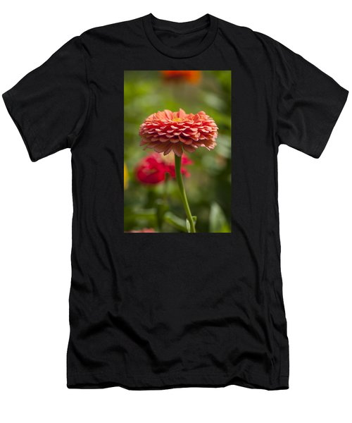 Zinnia Portrait Men's T-Shirt (Athletic Fit)