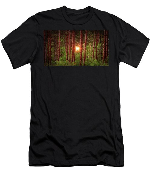 010 - Pine Sunset Men's T-Shirt (Athletic Fit)