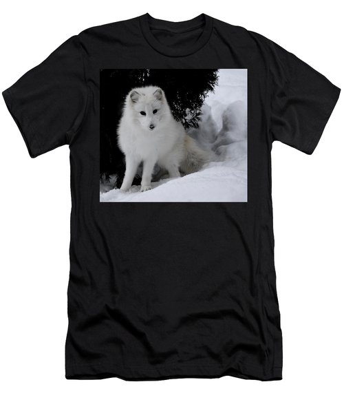 Artic Fox Men's T-Shirt (Athletic Fit)