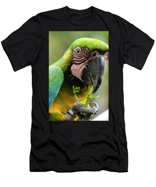 Men's T-Shirt (Athletic Fit) featuring the photograph Beautiful Macaw Bird by Rob D Imagery