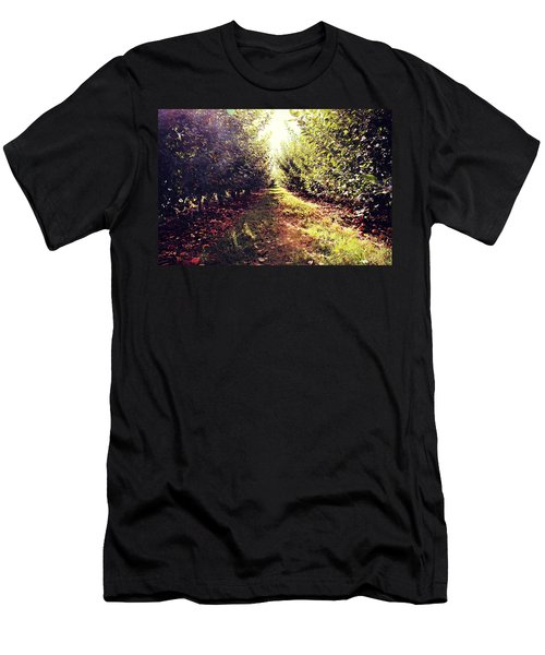 Apple Orchard Men's T-Shirt (Athletic Fit)