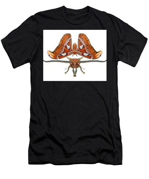 Atlas Moth5 Men's T-Shirt (Athletic Fit)