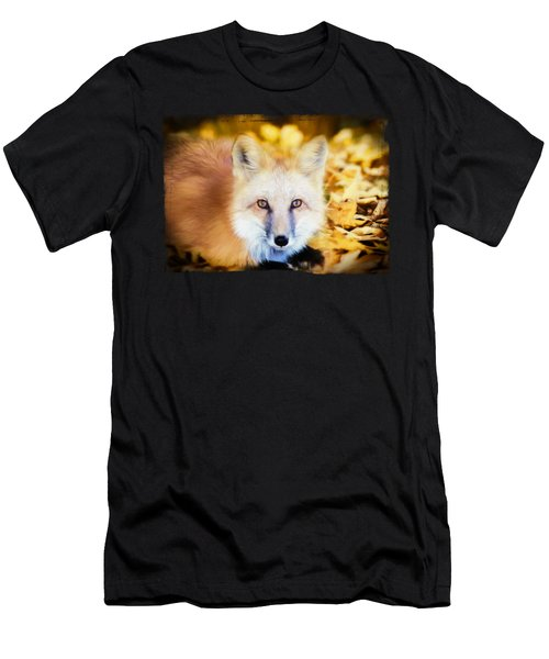 Autumn Fox Men's T-Shirt (Athletic Fit)