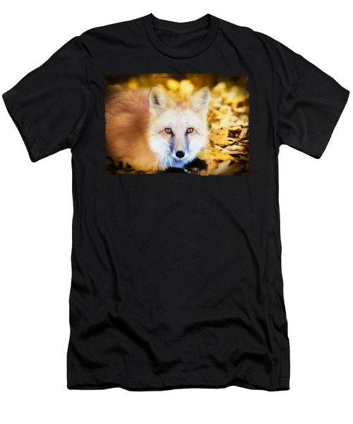 Autumn Fox Men's T-Shirt (Athletic Fit)