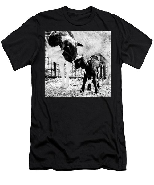 Baba And Pepe Sheep Men's T-Shirt (Athletic Fit)