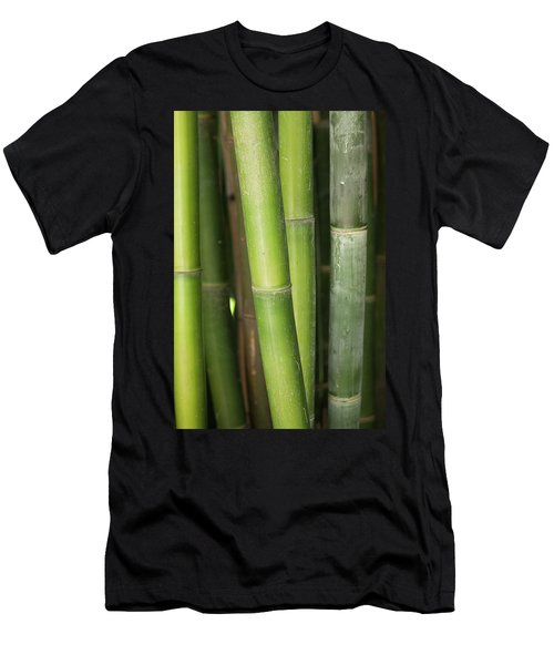 Bamboo Stalk 4057 Men's T-Shirt (Athletic Fit)