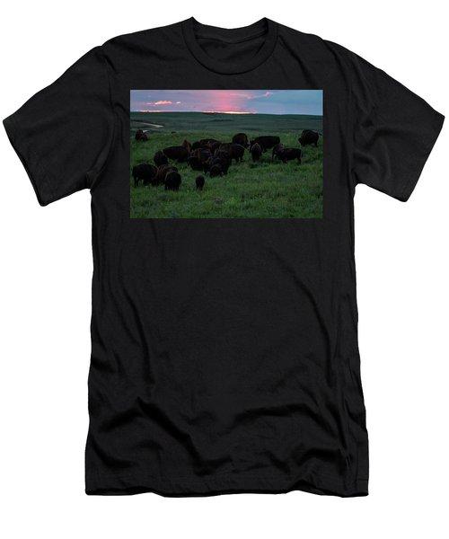 Bison At Sunset Men's T-Shirt (Athletic Fit)