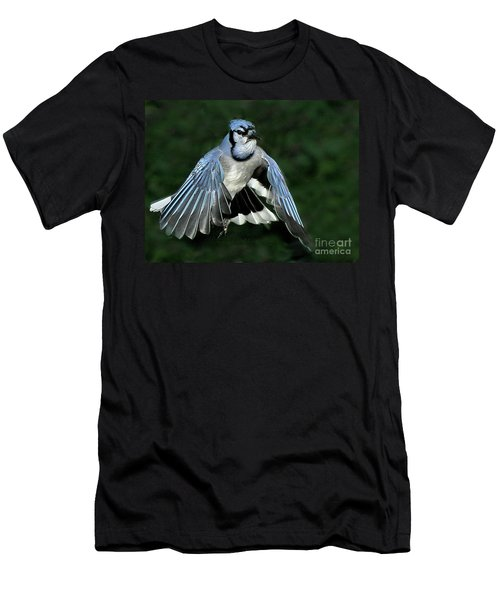 Men's T-Shirt (Athletic Fit) featuring the photograph Blue Jay by Debbie Stahre