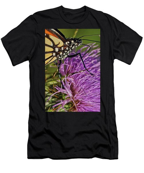 Butterfly Closeup Vertical Men's T-Shirt (Athletic Fit)