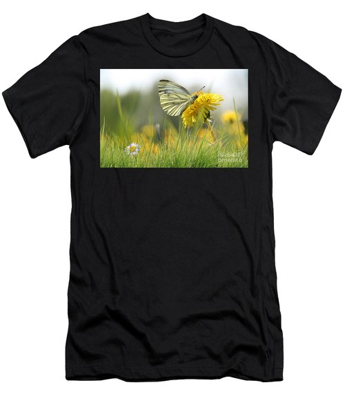 Butterfly On Dandelion Men's T-Shirt (Athletic Fit)