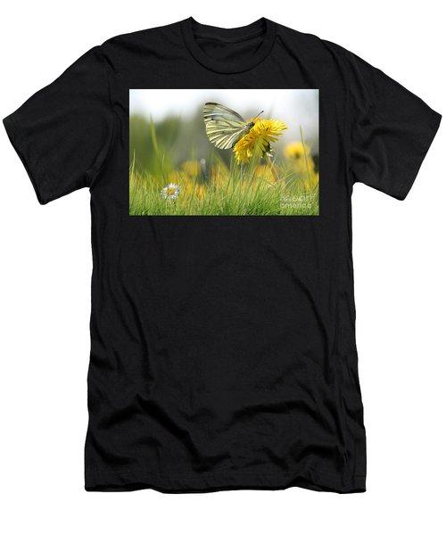 Butterfly On Dandelion Men's T-Shirt (Athletic Fit)