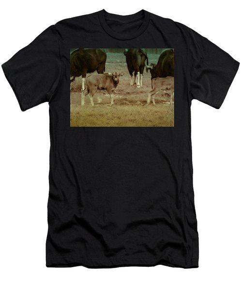 Calf Posing Men's T-Shirt (Athletic Fit)