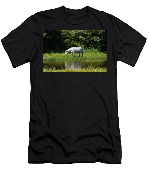 Cumbria. Ulverston. Horse By The Canal Men's T-Shirt (Athletic Fit)