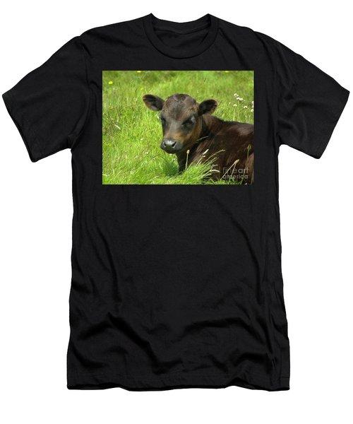 Cute Cow Men's T-Shirt (Athletic Fit)