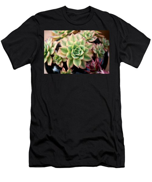 Cute Succulent Men's T-Shirt (Athletic Fit)