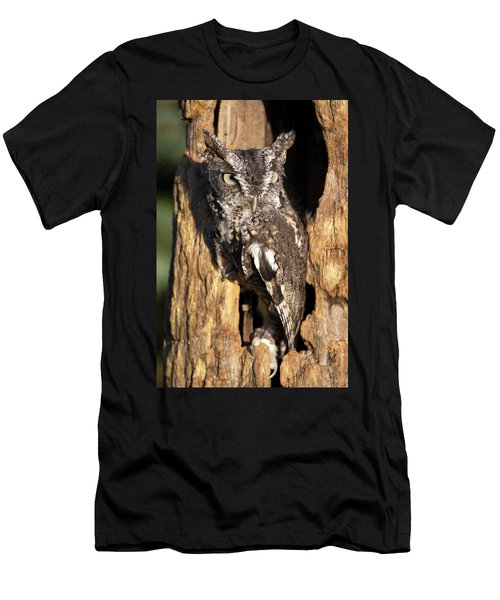 Eastern Screech Owl 92515 Men's T-Shirt (Athletic Fit)