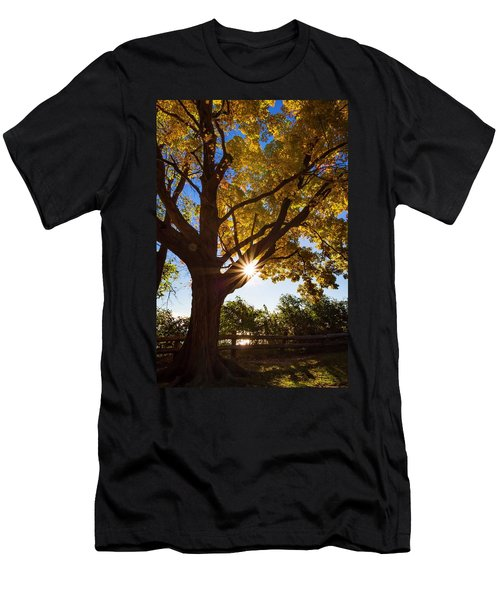 Electric Forest Men's T-Shirt (Athletic Fit)
