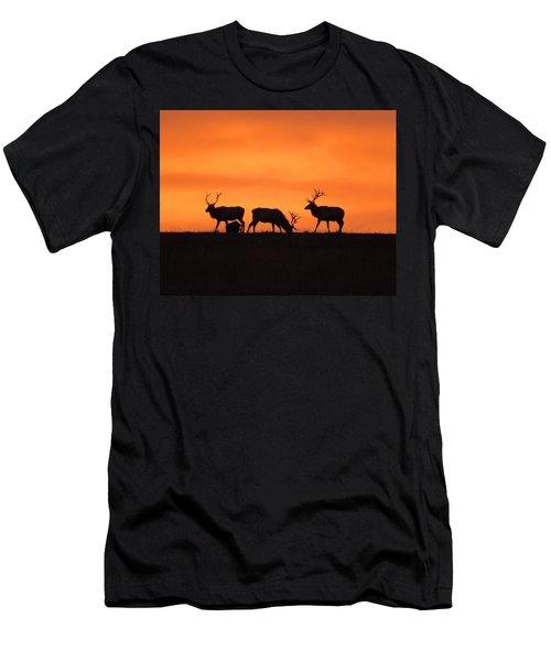 Elk In The Morning Light Men's T-Shirt (Athletic Fit)