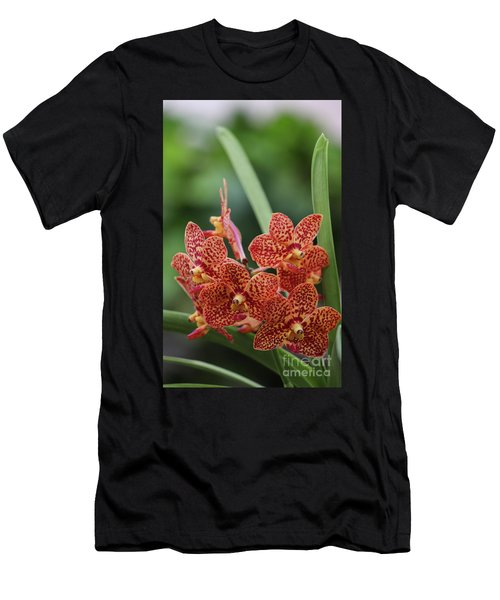 Family Of Orange Spotted Orchids Men's T-Shirt (Athletic Fit)